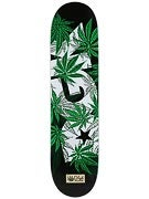 DGK Homegrown Deck  8.06 x 32