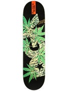 DGK Keep On Grass Deck  8.06 x 32
