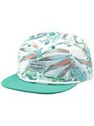 Element Oasis Snapback Hat