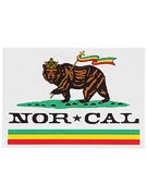 Nor Cal Rude Bear 5