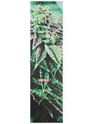 High Times Magazine Weed 1 Griptape by Mob
