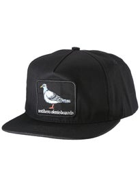 Anti Hero Pigeon Patch Unstructured Snapback Hat