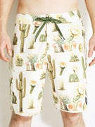 Brixton Plank Boardshorts  Cream/Green