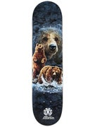 Element x The Mountain Bear Logo Deck 7.625 x 31.375