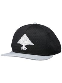LRG Spring Training Snapback Hat