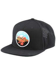 Nike SB Cherry Blossom Perf Pro Hat