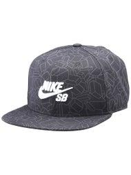 Nike SB Artist GM Hat