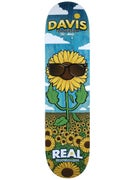 Real Torgerson x Glassy Sunhaters Deck 8.06 x 32