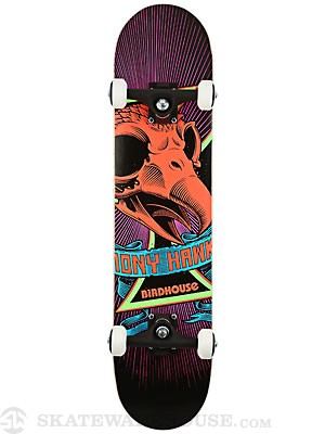 Birdhouse Tony Hawk Skull Mini Complete 7.25 x 31.25